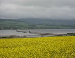 Cromarty Firth Bridge 2